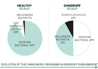 Nerovnováha mikrobiómu